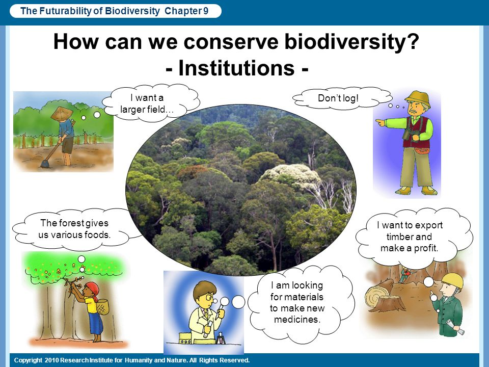 Copyright 2010 Research Institute for Humanity and Nature. All Rights Reserved. How can we conserve biodiversity? - Institutions - The Futurability of