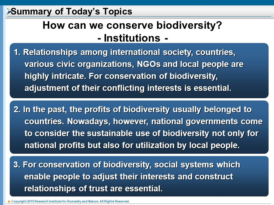 Copyright 2010 Research Institute for Humanity and Nature. All Rights Reserved. Summary of Todays Topics 1. Relationships among international society,