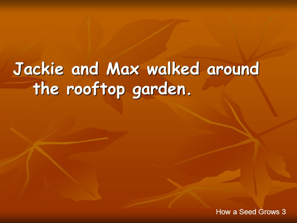 Jackie and Max walked around the rooftop garden. How a Seed Grows 3