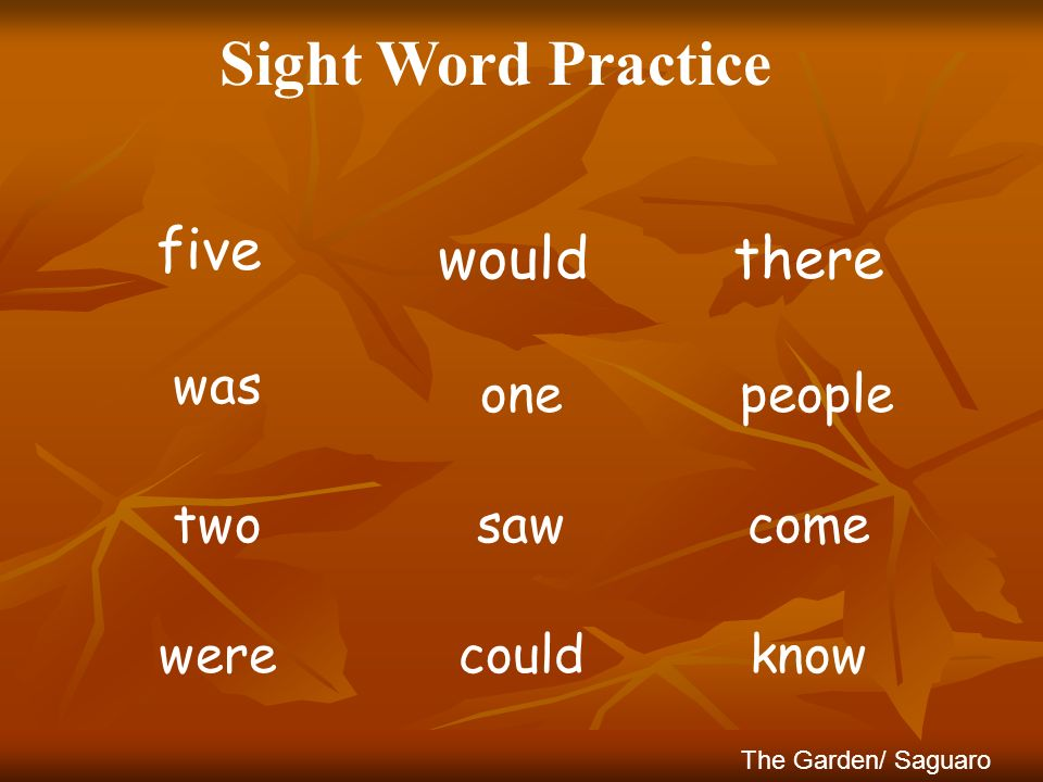 Sight Word Practice therewould five peopleone was comesawtwo The Garden/ Saguaro knowcouldwere