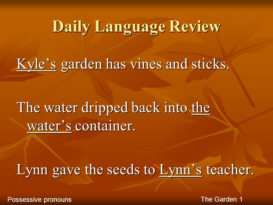Daily Language Review Kyles garden has vines and sticks. The water dripped back into the waters container. Lynn gave the seeds to Lynns teacher. The G