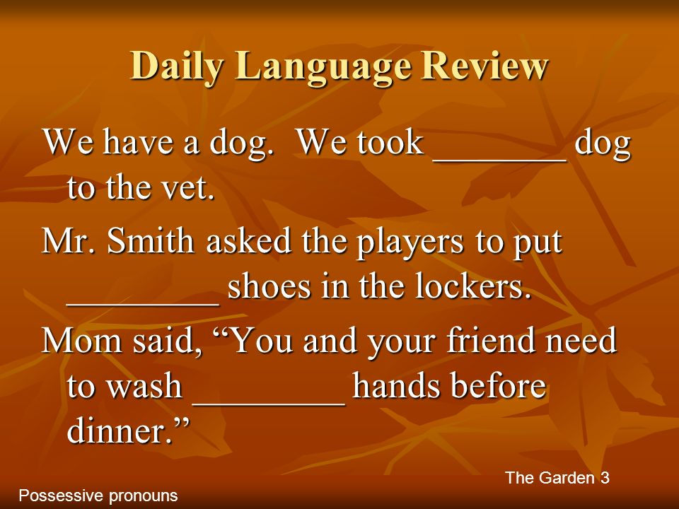 Daily Language Review We have a dog. We took _______ dog to the vet. Mr. Smith asked the players to put ________ shoes in the lockers. Mom said, You a