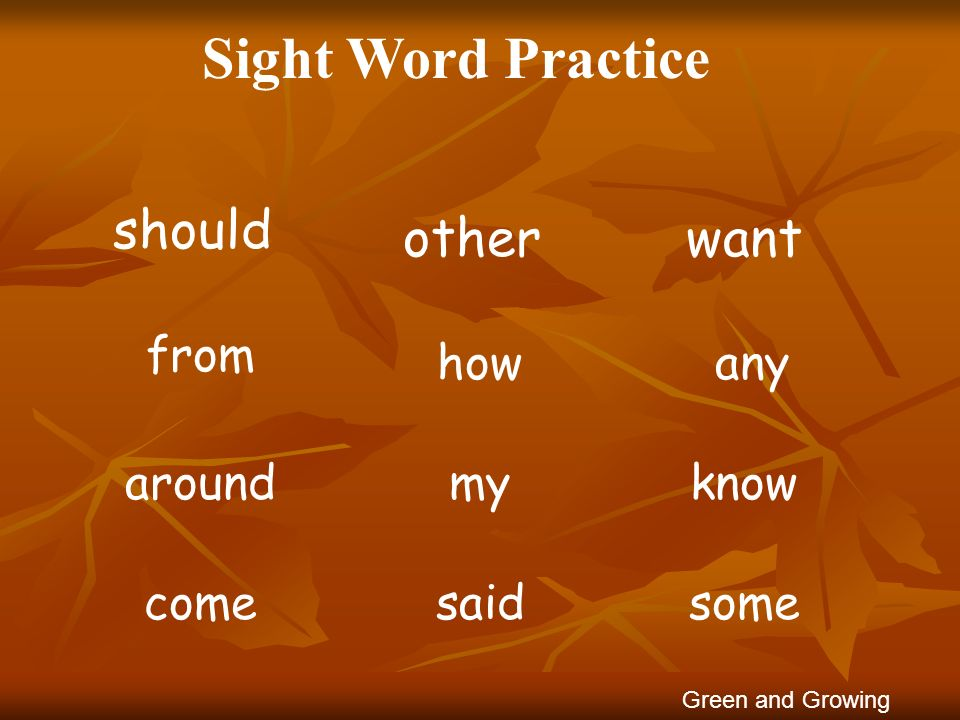 Sight Word Practice wantother should anyhow from knowmyaround Green and Growing somesaidcome
