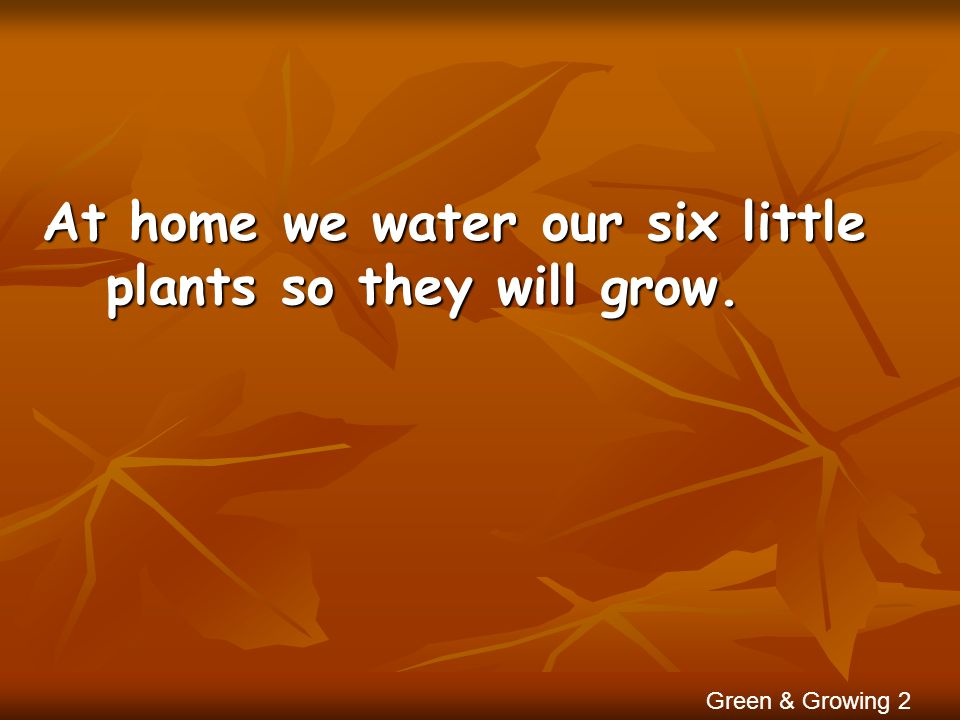 At home we water our six little plants so they will grow. Green & Growing 2