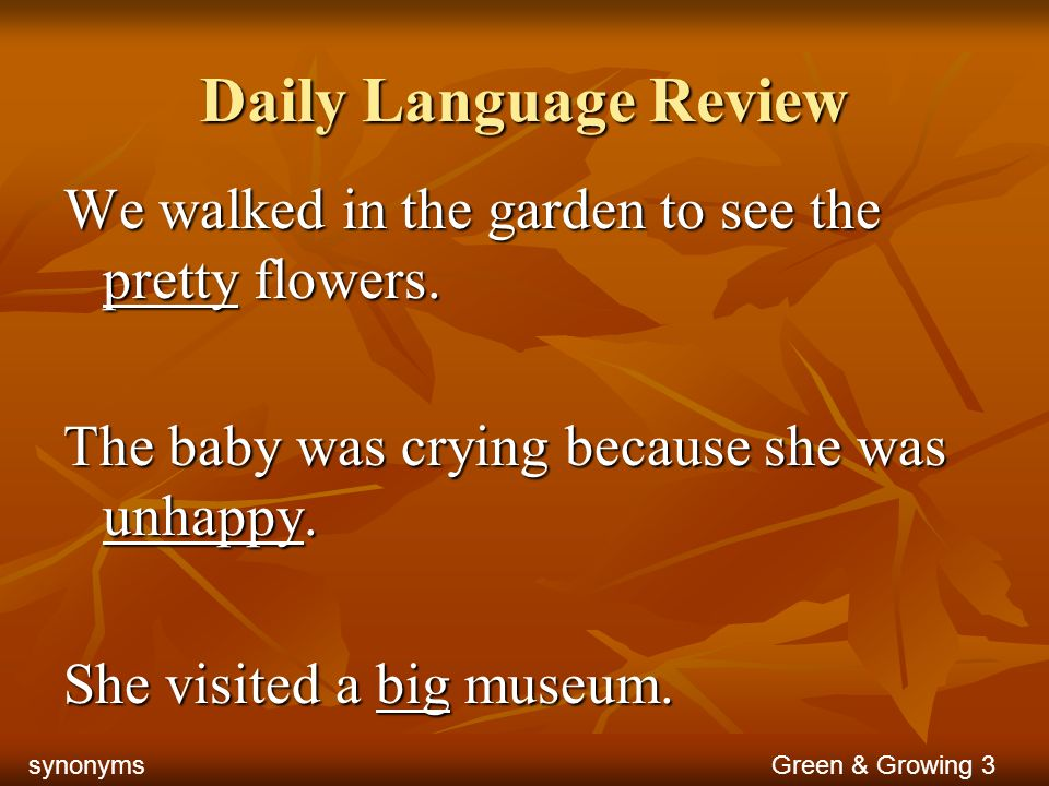 Daily Language Review We walked in the garden to see the pretty flowers. The baby was crying because she was unhappy. She visited a big museum. Green