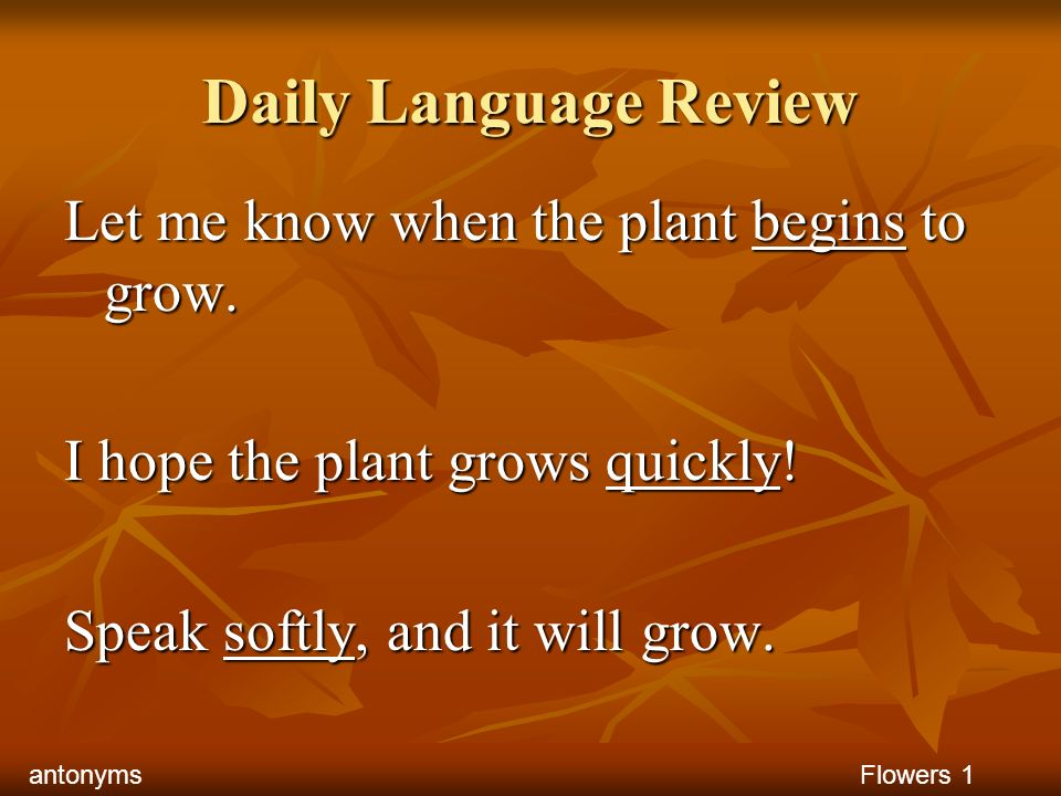 Daily Language Review Let me know when the plant begins to grow. I hope the plant grows quickly! Speak softly, and it will grow. Flowers 1antonyms