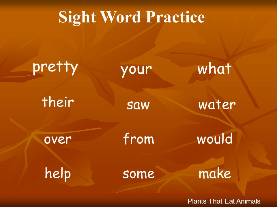 Sight Word Practice whatyour pretty watersaw their wouldfromover Plants That Eat Animals makesomehelp