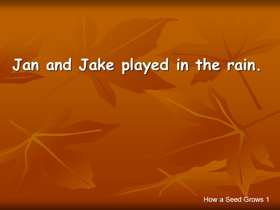 Jan and Jake played in the rain. How a Seed Grows 1