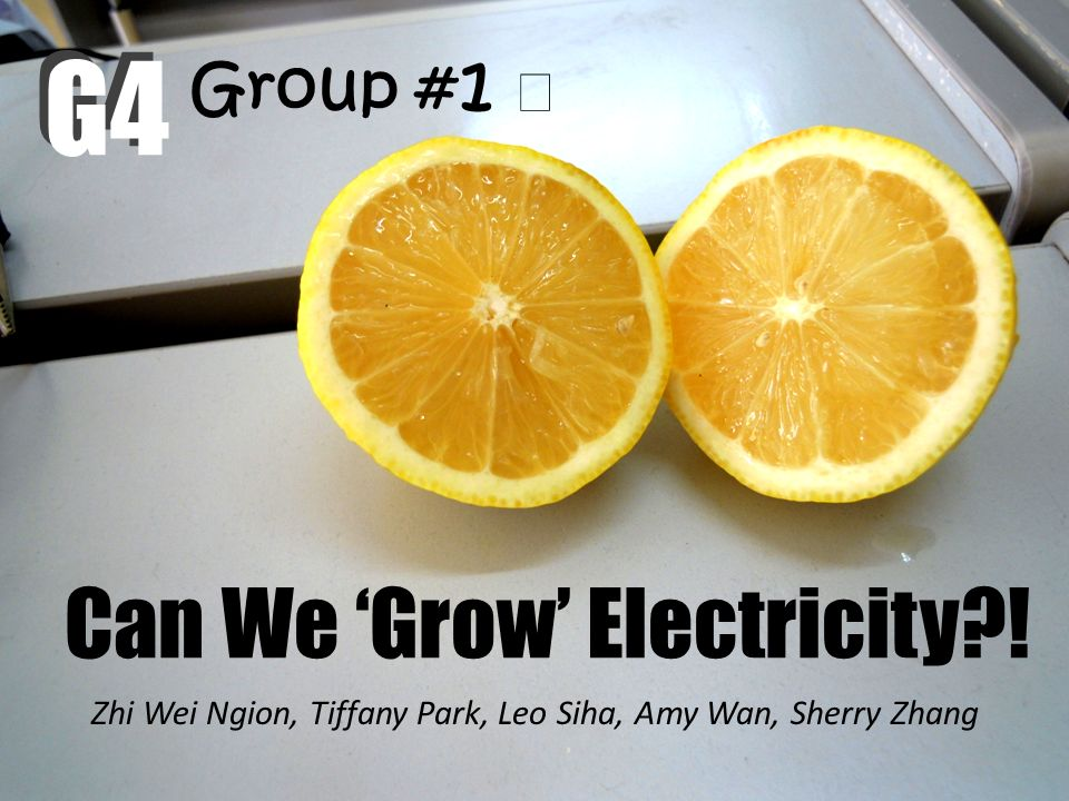 Can We Grow Electricity?! Zhi Wei Ngion, Tiffany Park, Leo Siha, Amy Wan, Sherry Zhang G4 Group # 1 G4
