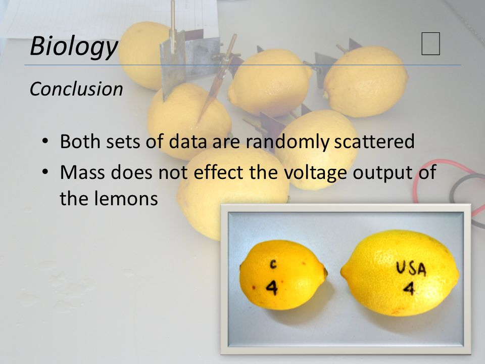 Biology Conclusion Both sets of data are randomly scattered Mass does not effect the voltage output of the lemons
