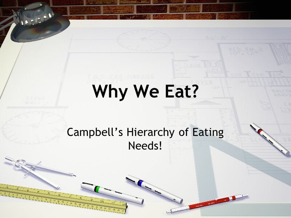 Why We Eat? Campbells Hierarchy of Eating Needs!