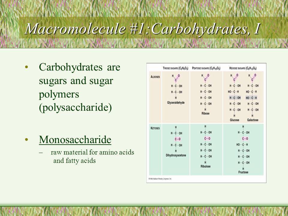 Carbohydrates, II Disaccharides –Two saccharides (sugars) Polysaccharides – three or more sugars linked together