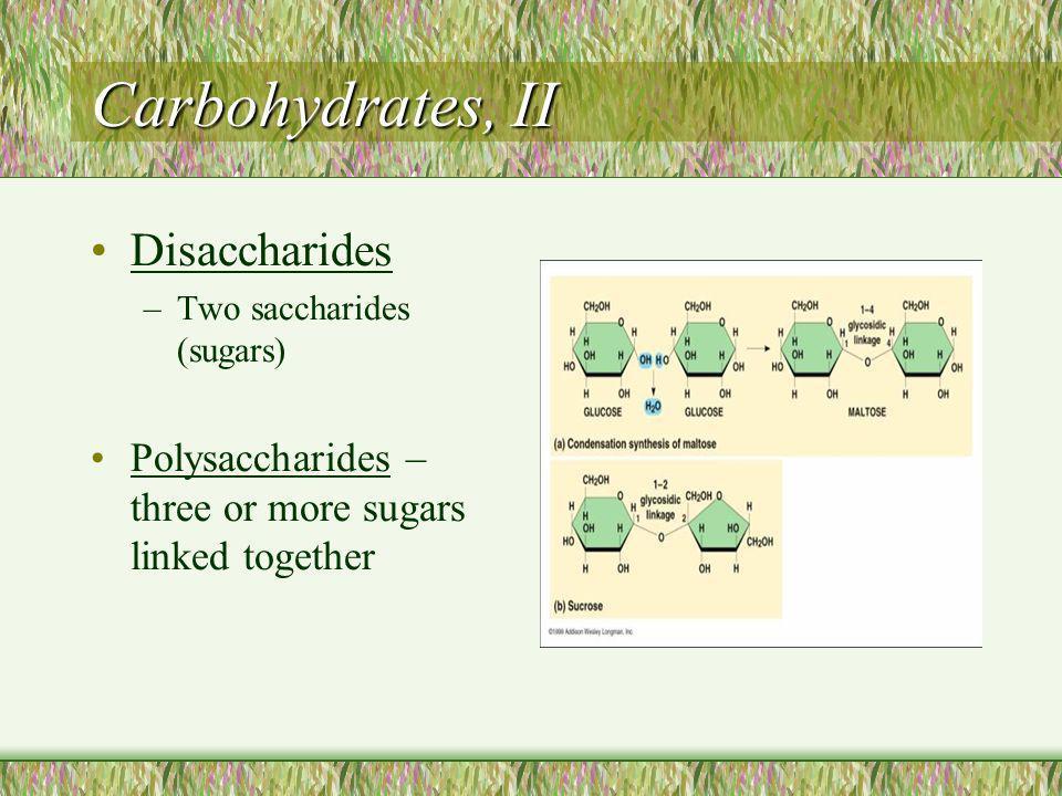 Tertiary Structure Conformation: irregular contortions from R group bonding Hydrophobic disulfide bridges hydrogen bonds ionic bonds