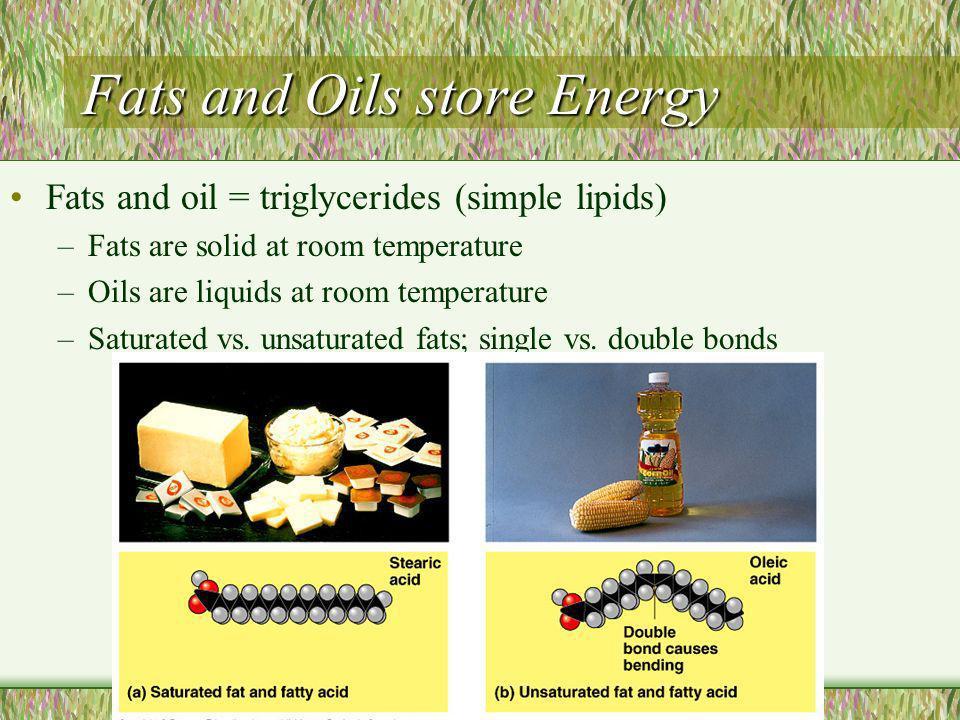 Nucleic Acids, II 1.Deoxyribonucleic acid (DNA) 2.Ribonucleic acid (RNA)
