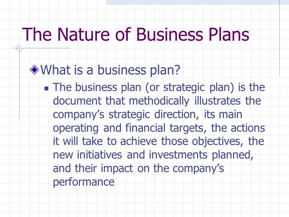 The Nature of Business Plans What is a business plan? The business plan (or strategic plan) is the document that methodically illustrates the companys