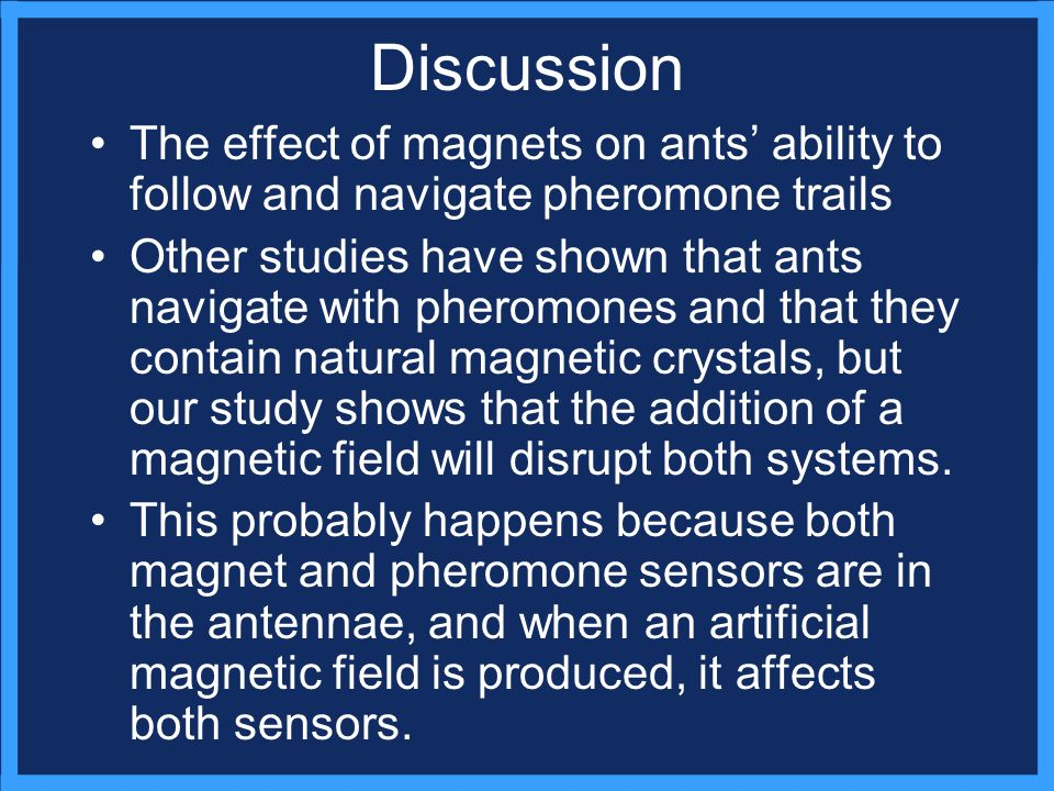 Discussion The effect of magnets on ants ability to follow and navigate pheromone trails Other studies have shown that ants navigate with pheromones and that they contain natural magnetic crystals, but our study shows that the addition of a magnetic field will disrupt both systems.