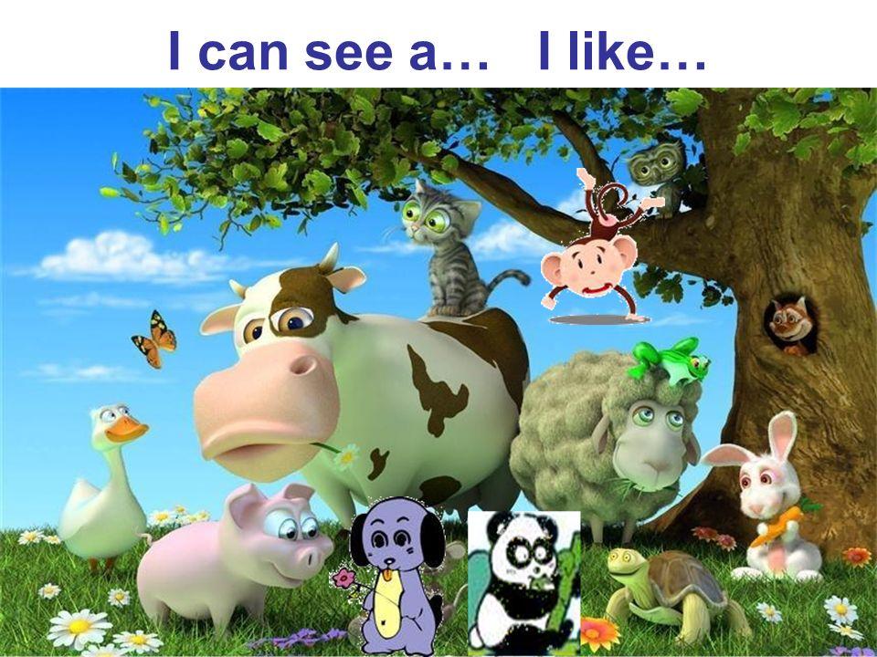 I can see a… I like…