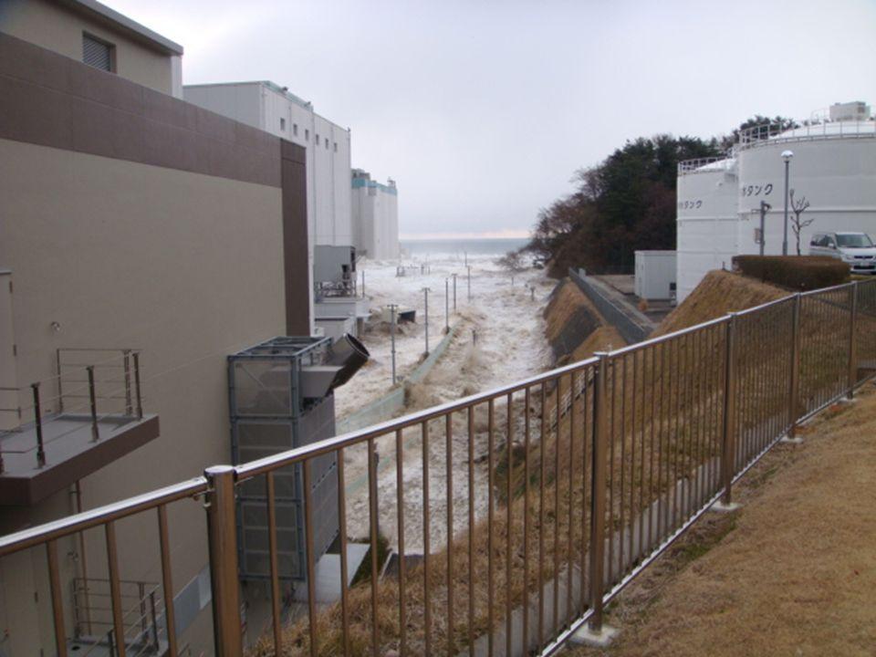 Fukushima 3-11-11