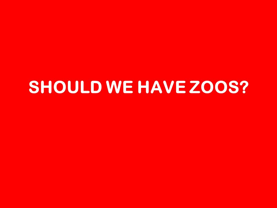 SHOULD WE HAVE ZOOS