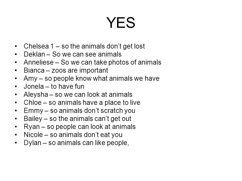MAYBE Connor – so animals dont get lost and they still need to live in the jungle