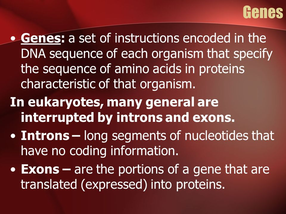 Genes Genes: a set of instructions encoded in the DNA sequence of each organism that specify the sequence of amino acids in proteins characteristic of