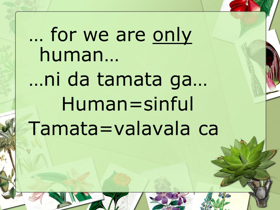 … for we are only human… …ni da tamata ga… Human=sinful Tamata=valavala ca