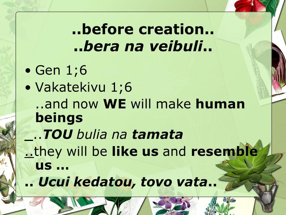 ..before creation....bera na veibuli.. Gen 1;6 Vakatekivu 1;6..and now WE will make human beings..TOU bulia na tamata..they will be like us and resemb