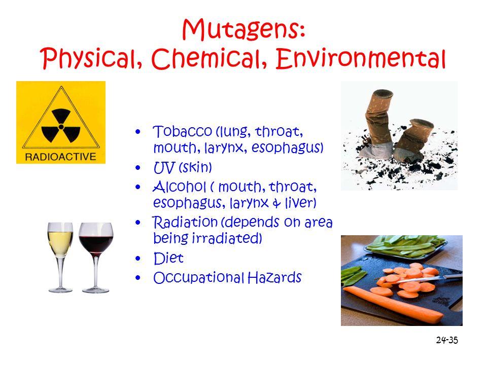 24-35 Mutagens: Physical, Chemical, Environmental Tobacco (lung, throat, mouth, larynx, esophagus) UV (skin) Alcohol ( mouth, throat, esophagus, laryn