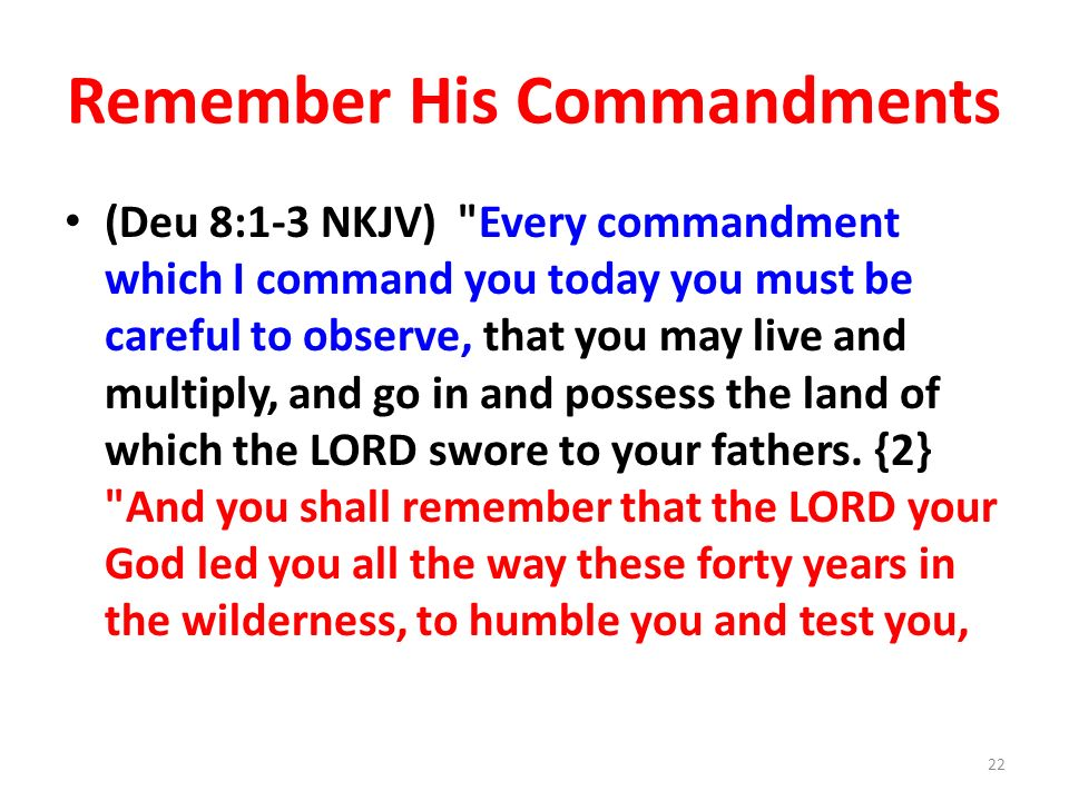 Remember His Commandments (Deu 8:1-3 NKJV)