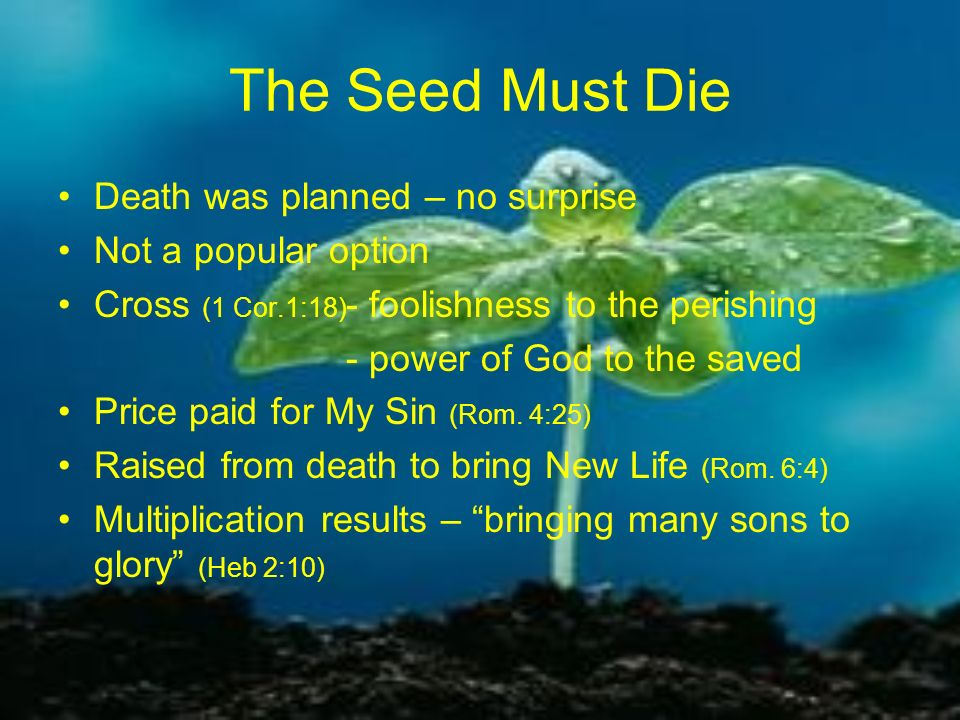The Seed Must Die Death was planned – no surprise Not a popular option Cross (1 Cor.1:18) - foolishness to the perishing - power of God to the saved P