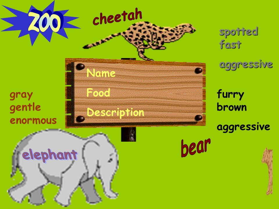Name Food Description gray gentle enormous furry brown aggressive spotted fast aggressive