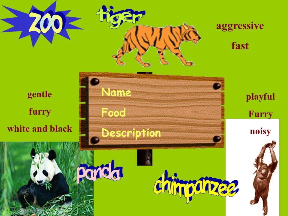 Name Food Description gentle furry white and black aggressive fast playful Furry noisy