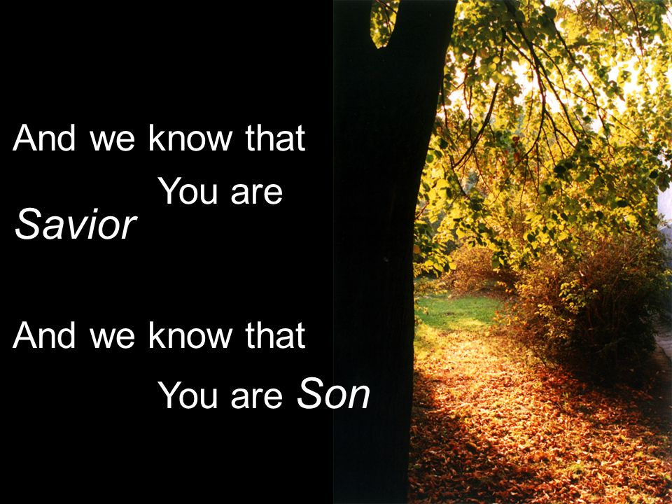 And we know that You are Savior And we know that You are Son