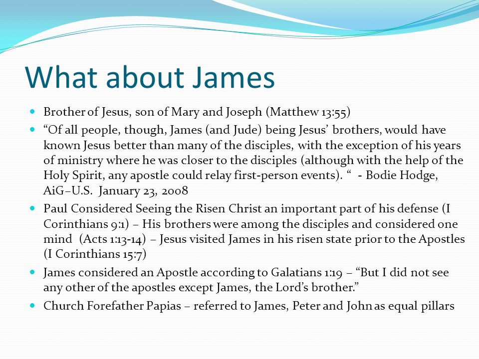 What about James Brother of Jesus, son of Mary and Joseph (Matthew 13:55) Of all people, though, James (and Jude) being Jesus brothers, would have kno
