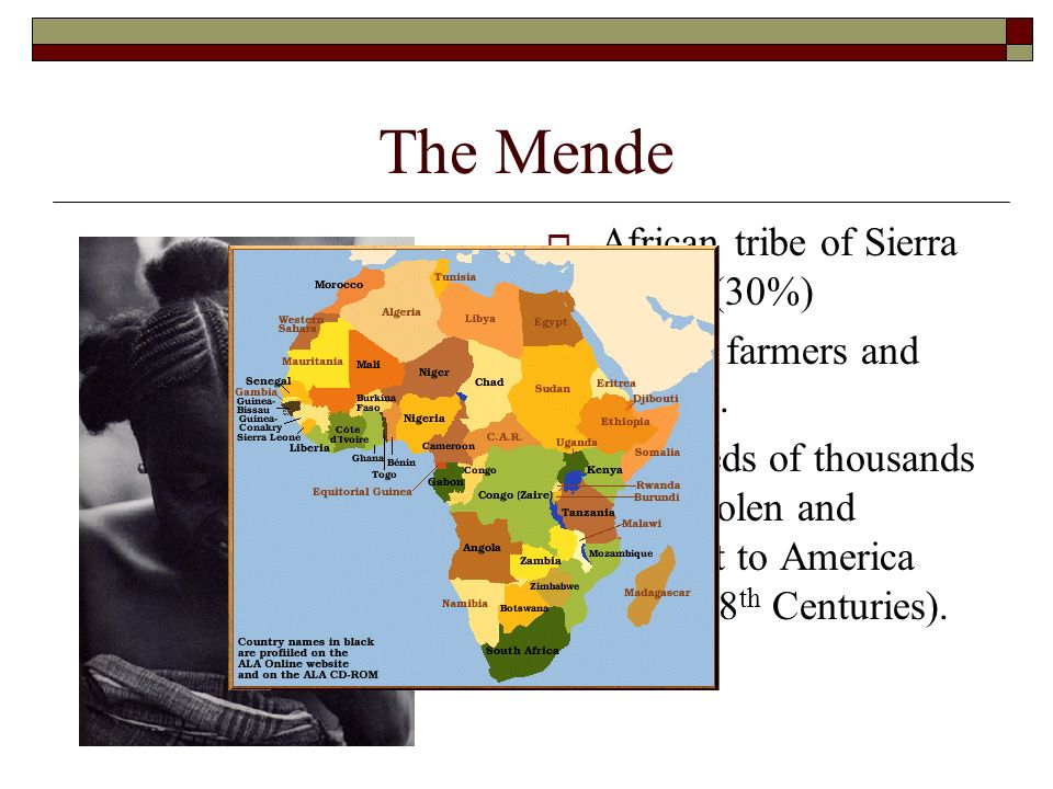 The Mende African tribe of Sierra Leone (30%) Mostly farmers and hunters. Hundreds of thousands were stolen and brought to America (16 th -18 th Centu