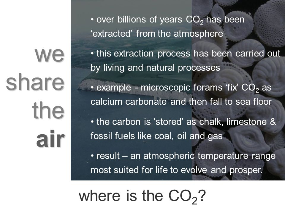 we share the air over billions of years CO 2 has been extracted from the atmosphere this extraction process has been carried out by living and natural processes example - microscopic forams fix CO 2 as calcium carbonate and then fall to sea floor the carbon is stored as chalk, limestone & fossil fuels like coal, oil and gas result – an atmospheric temperature range most suited for life to evolve and prosper.