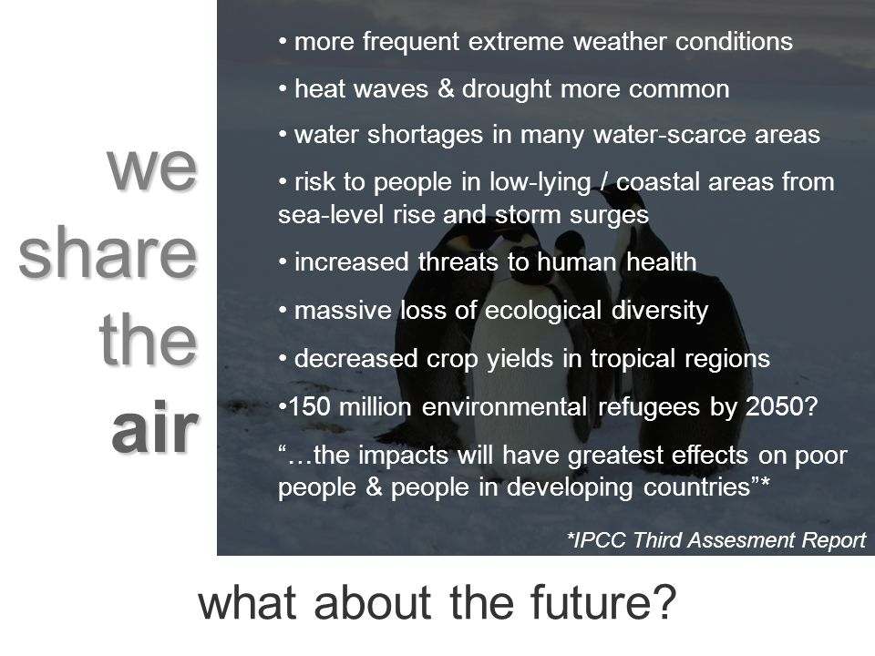 we share the air more frequent extreme weather conditions heat waves & drought more common water shortages in many water-scarce areas risk to people in low-lying / coastal areas from sea-level rise and storm surges increased threats to human health massive loss of ecological diversity decreased crop yields in tropical regions 150 million environmental refugees by 2050.