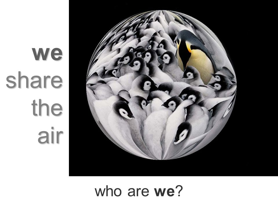 who are we? we share the air