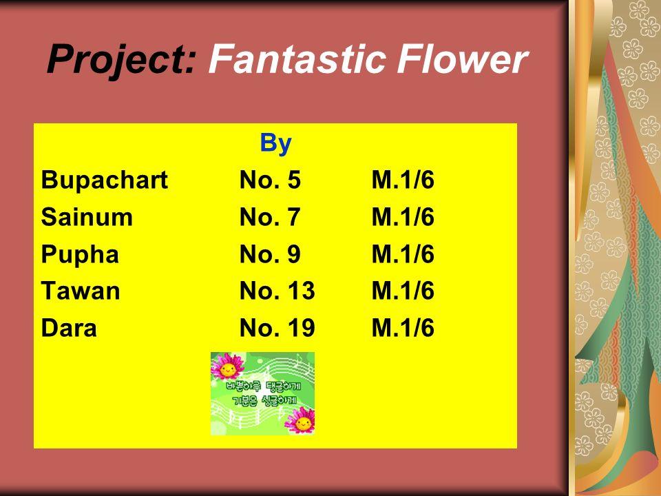 Project: Fantastic Flower By BupachartNo. 5M.1/6 Sainum No. 7 M.1/6 Pupha No. 9M.1/6 TawanNo. 13M.1/6 DaraNo. 19M.1/6