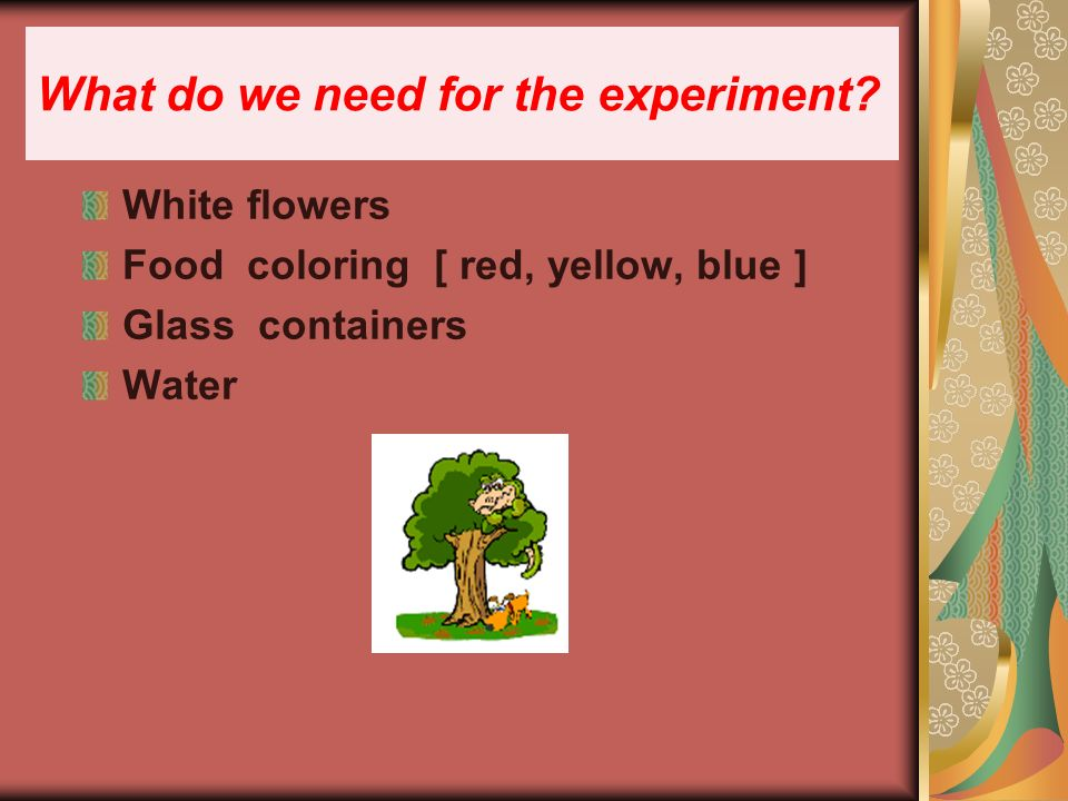 What do we need for the experiment.