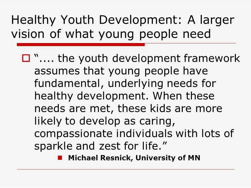 Healthy Youth Development: A larger vision of what young people need....