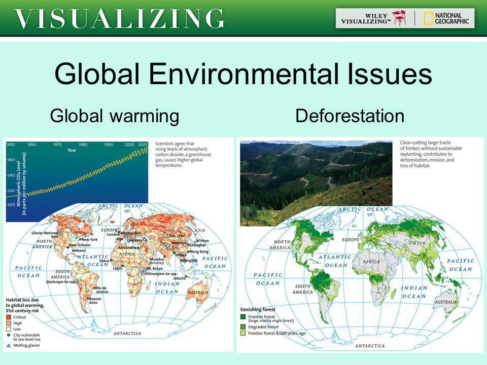Global Environmental Issues Global warming Deforestation