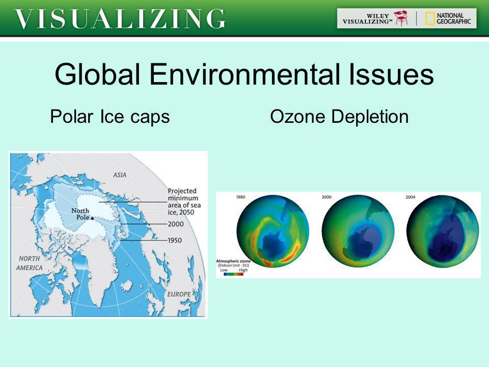 Global Environmental Issues Polar Ice capsOzone Depletion