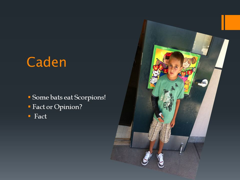 Caden Some bats eat Scorpions! Fact or Opinion Fact