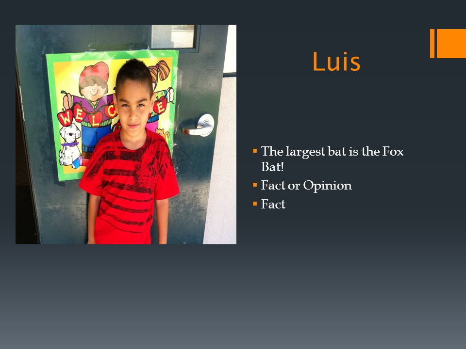Luis The largest bat is the Fox Bat! Fact or Opinion Fact
