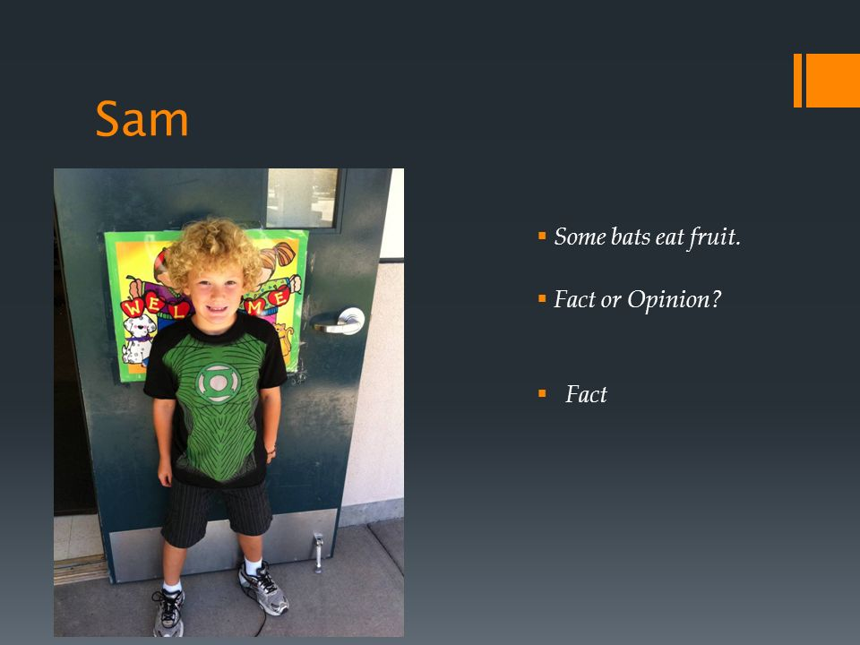 Sam Some bats eat fruit. Fact or Opinion Fact