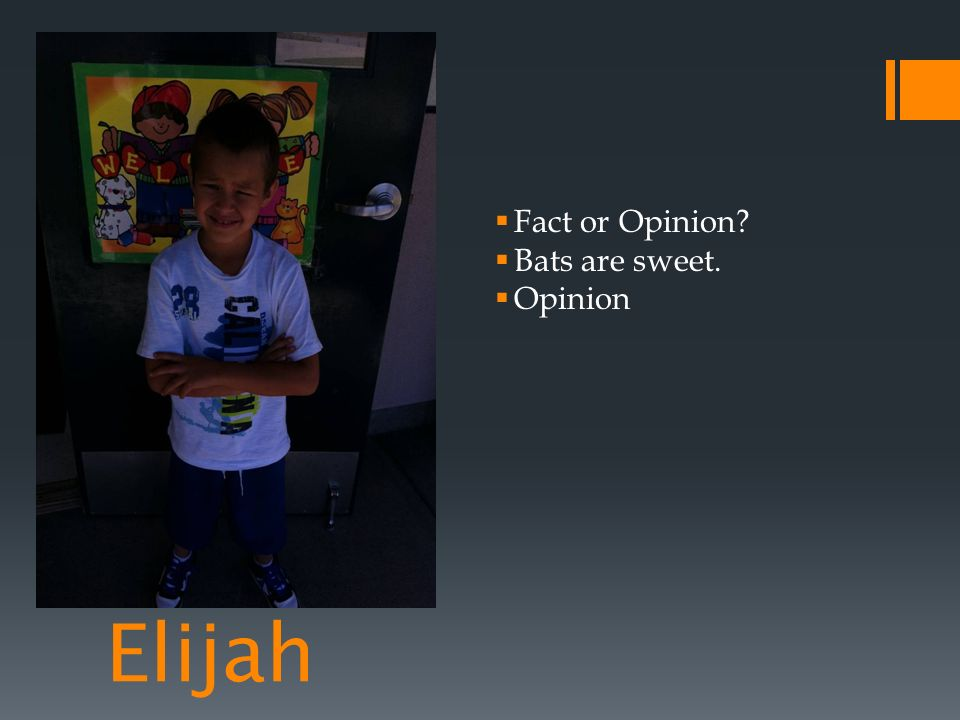 Elijah Fact or Opinion Bats are sweet. Opinion