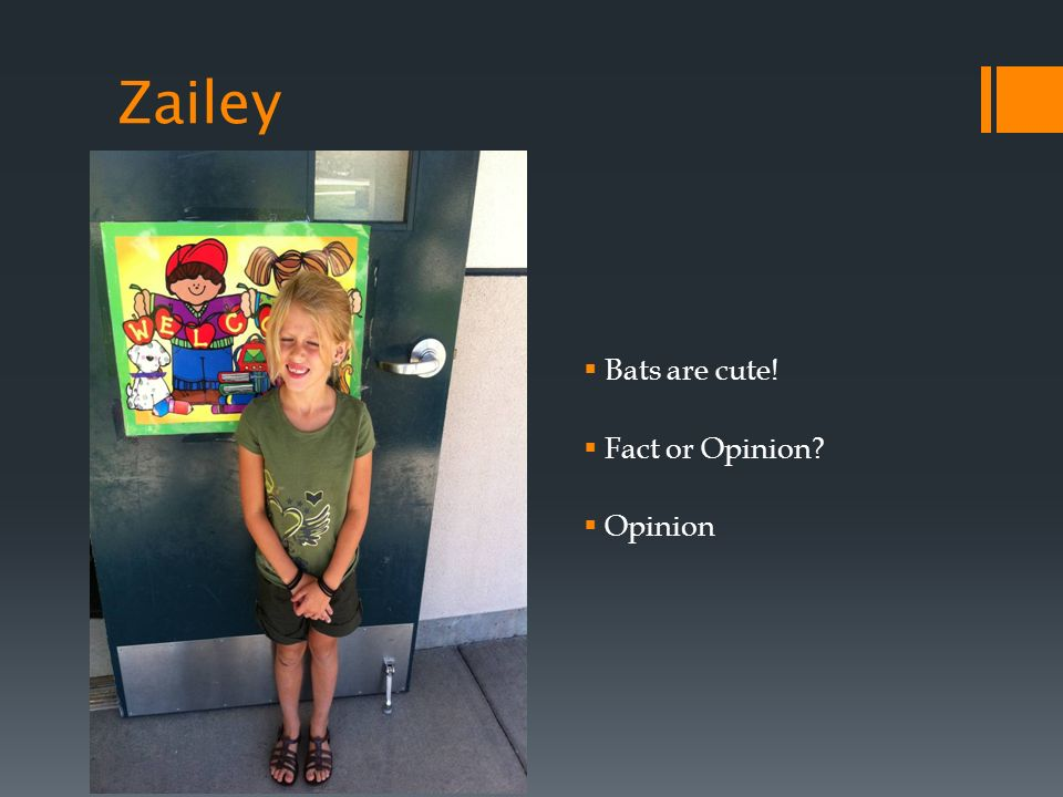 Zailey Bats are cute! Fact or Opinion Opinion