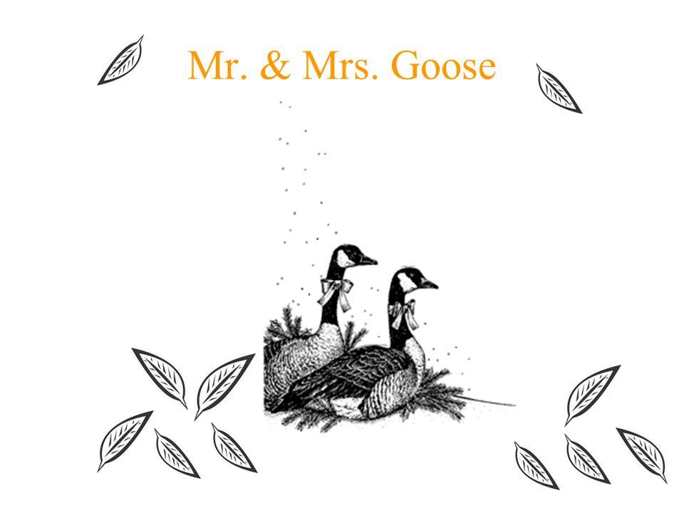 Mr. & Mrs. Goose