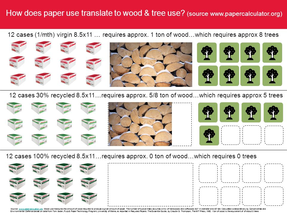How does paper use translate to wood & tree use.